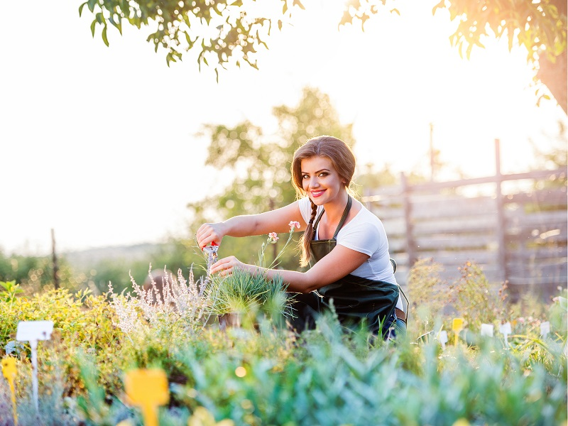 landscaping tricks