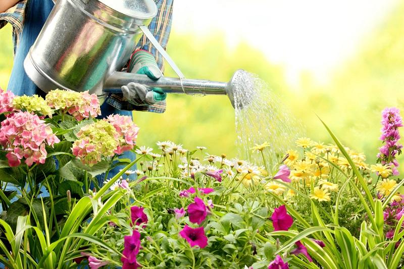 prepare a garden