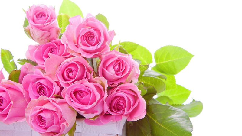 What Do The Bridals Bouquets come From Pink Flowers?